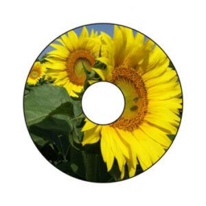 Blumen A-Nr. 008