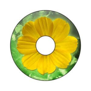 Blumen A-Nr. 002