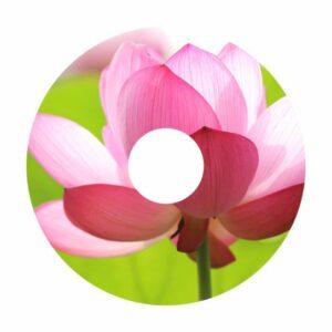 Blumen A-Nr. 018